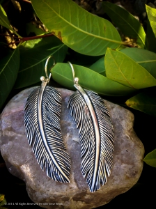 Small Raven Feathers 2014